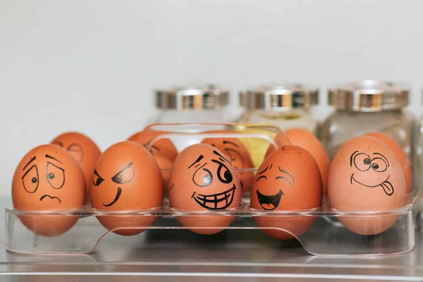 Toddler Egg Carton Activities