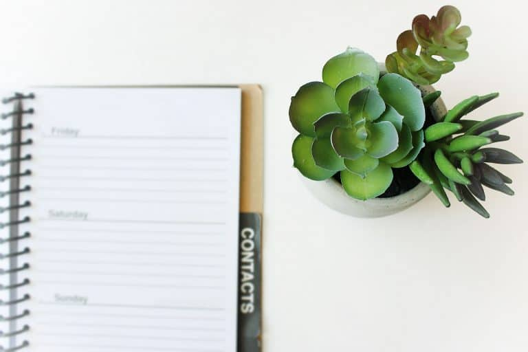 How to Get Rid of Homemaking Stress and Flourish (+50 resources to help)